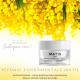 Authentik beauty - crème fondamentale embellissante A0410081